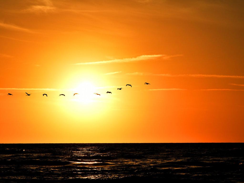 Wakacje w Polsce: Ciekawostki o Morzu Bałtyckim